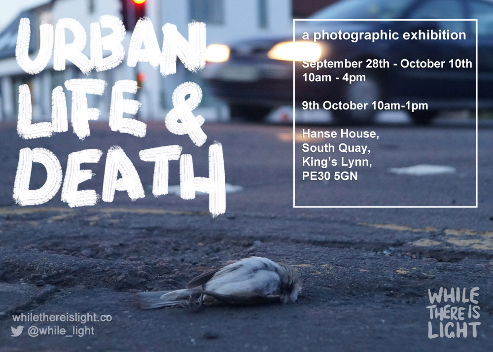 urban-life-and-death-flyer-landscape-drop-frozen-dead-hanse-upload